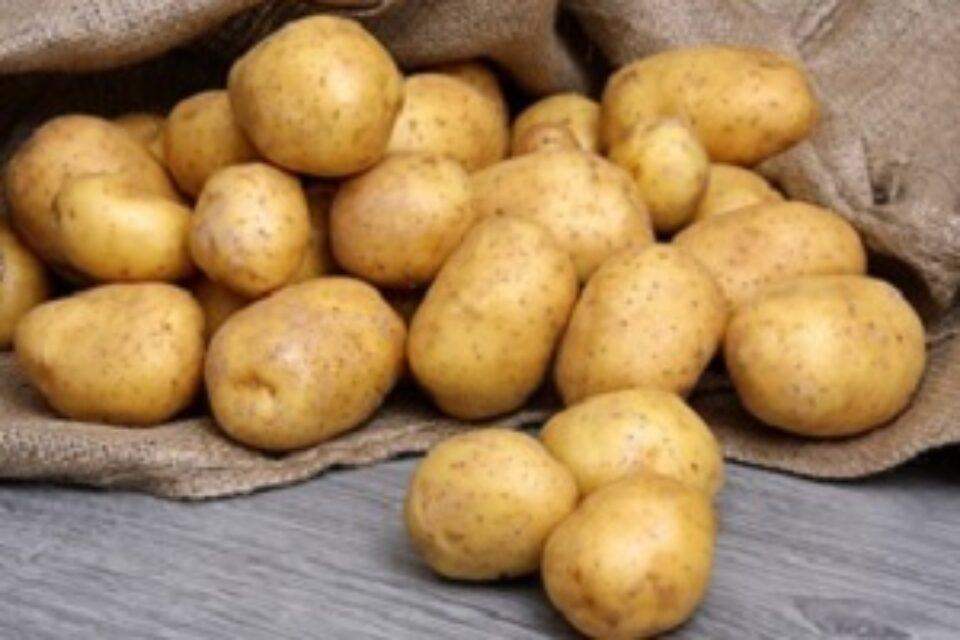 Kartoffel Sack
