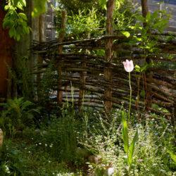 Mario Knecht Gartengestaltung Naturgarten