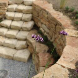 Natursteinmauer Mario Knecht Gartengestaltung Basel