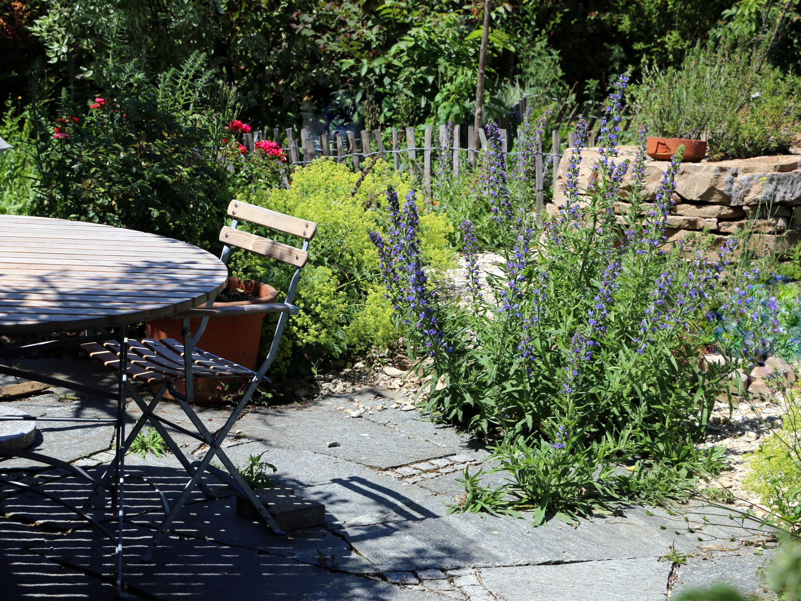Mario Knecht Gartengestaltung Basel Naturgarten